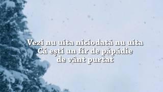 Vili Dula - Vezi nu uita (lyrics)