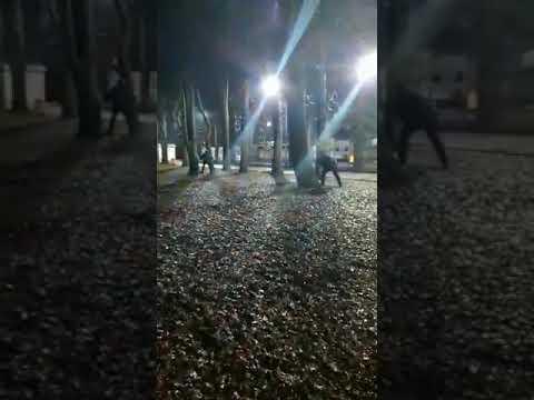 перестрелка в Ставрополе. 21.11.2018