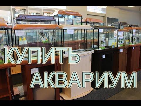 Купить аквариум в Санкт-Петербурге: огромный выбор!