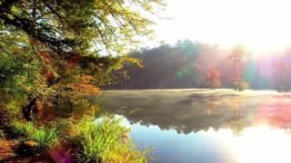 Calvin Harris ft. Avicii - Hold On  (NEW SONG 2017)