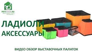 Видеообзор аксессуары Ладиоли для собак и кошек