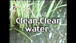 Glendon BioFilter Video - Simply The Best Septic System Available