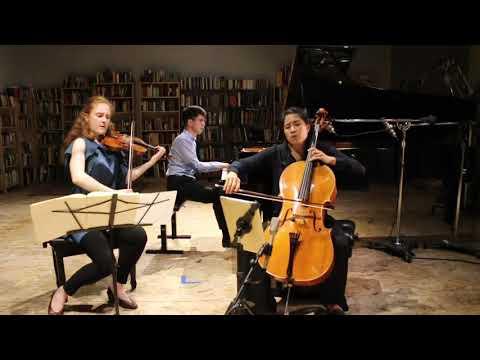 Merz Trio plays Brahms C minor Trio, Op. 101 -- I. Allegro energico