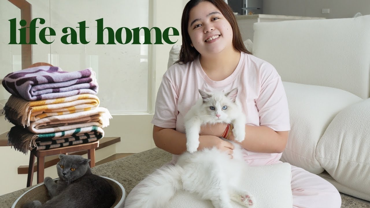 Download LIFE AT HOME: Relaxing Day with My Cats & New Home Items 🐈🛋💗    Jammy Cruz