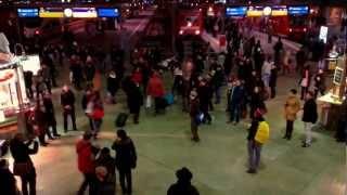 Es ist ein Ros entsprungen - UniversitätsChor München Flashmob