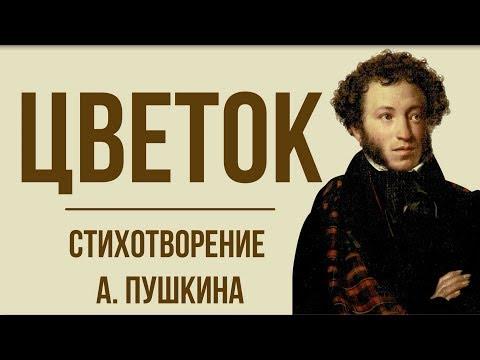 «Цветок» А. Пушкин. Анализ стихотворения