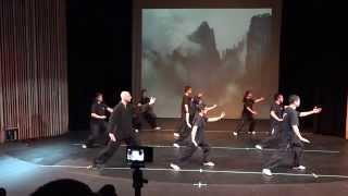 2015 Soaring Eagle Kung Fu Recital - 24式太极拳