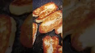 Производство сыра в домашних условиях