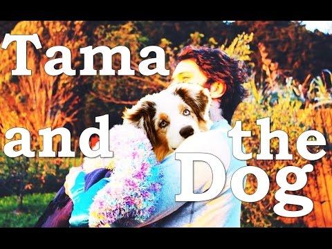 Tama and the Dog
