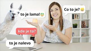 Вопросы и ответы по-чешски | Урок 2 | Уроки чешского языка с носителем для начинающих.