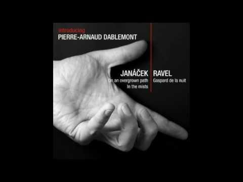 Leoš Janáček - On an overgrown path (complete) - Pierre-Arnaud Dablemont, piano