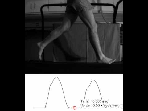 Barefoot Running: The Videos