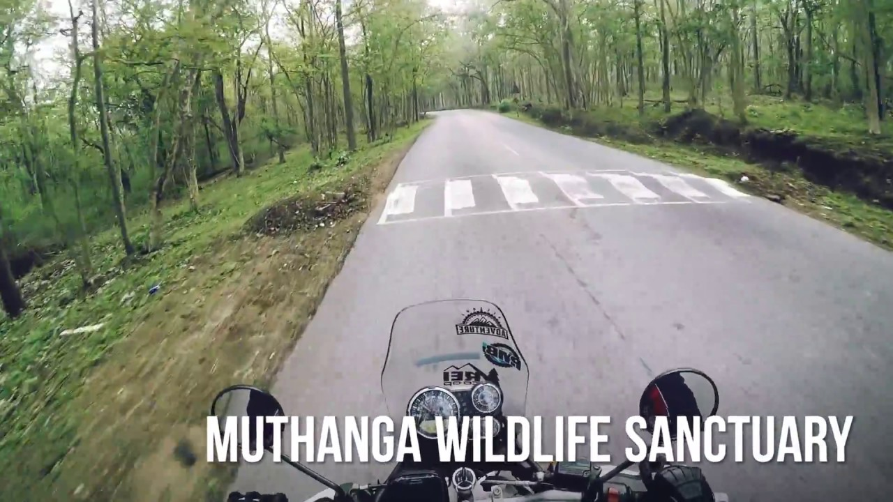 Gopro Life On Road with Royalenfield himalayan India | FunnyCat.TV