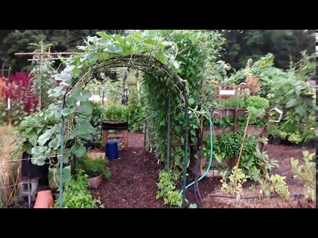 A Bounty Harvest... FDR Small Space Garden Exhibit