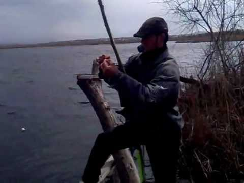 ловля рыбы в средней азии