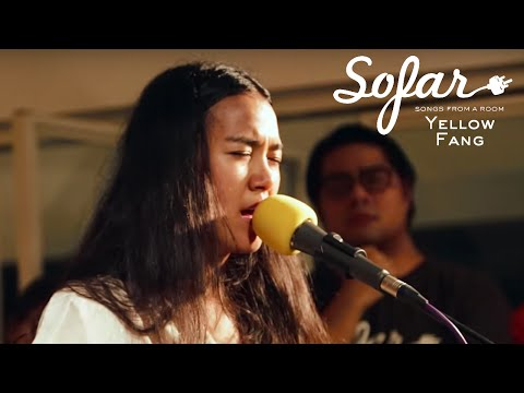 Yellow Fang - Blanket | Sofar Bangkok