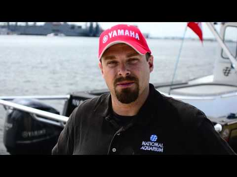 Baltimore Aquarium and Yamaha Outboards