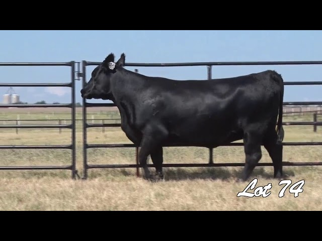Pollard Farms Lot 74