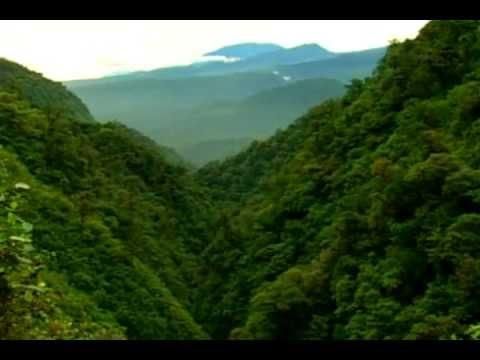 Resultado de imagen para parque nacional braulio carrillo