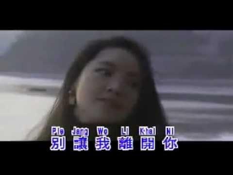 Wo Ce Cai Hu Ni -- (In Memoriam - Teresa Teng).flv