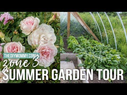 2017 Summer Garden Tour   Zone 3 Flowers & Veggies!