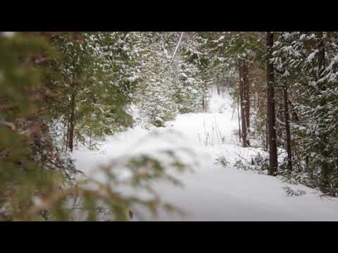 Screensaver HD - Winter Relaxation, Various Shots, Ontario Canada, 3 Hours, No Music