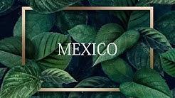 MAES X BOOBA '' MEXICO '' X BRAMSITO & NISKA TYPE BEAT || PROD DB BEATZ