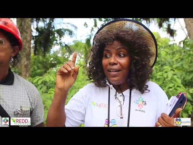 Suriname Overzee: Trots op Ons Bos - Cultuurtuin deel 1
