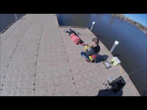 Weekend Trout And Carp Fishing In Arizona - Lynx Lake