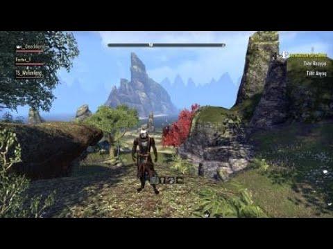 The Elder Scrolls Online: europa team work