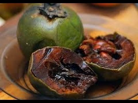 recipe: chocolate pudding fruit [8]