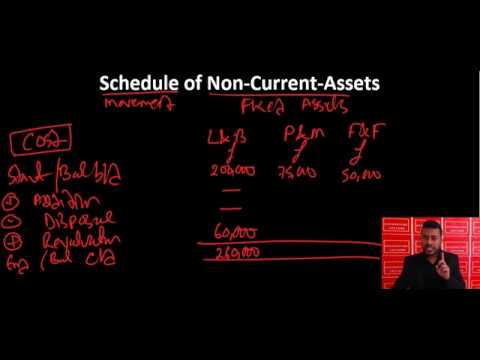 Schedule of Non Current Assets (disposals and depreciation)