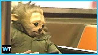 What's Going On With This BABY WEREWOLF On The Subway?! | What's Trending Now!