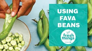 Fresh Things: Using aฑd Cleaning Fava Beans
