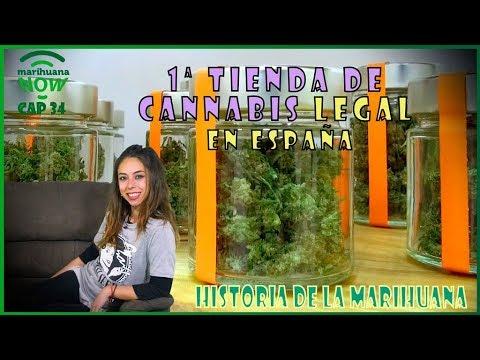 1ª tienda de CANNABIS LEGAL en España sin THC. Nueva exposición Hash Marihuana & Hemp Museum. NOW 34
