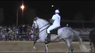 Andravida Horseshow 2013 Φαρμα Γκοσδης