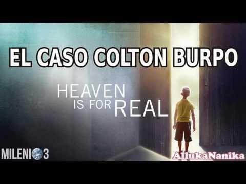 Milenio 3 - Hemorragia post-mortem / El Cielo es Real: El caso de Colton Burpo