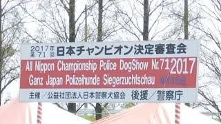 日本 #警察犬 協会主催(後援警視庁) 日本チャンピオン決定審査会 All ...