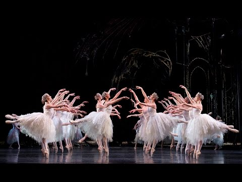 Swan Lake: Corps de Ballet (The Royal Ballet)