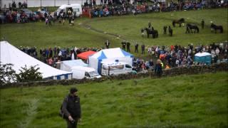 reeth show fell race 2012 u12