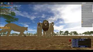 roblox random game slot (C) i saw the owner!?