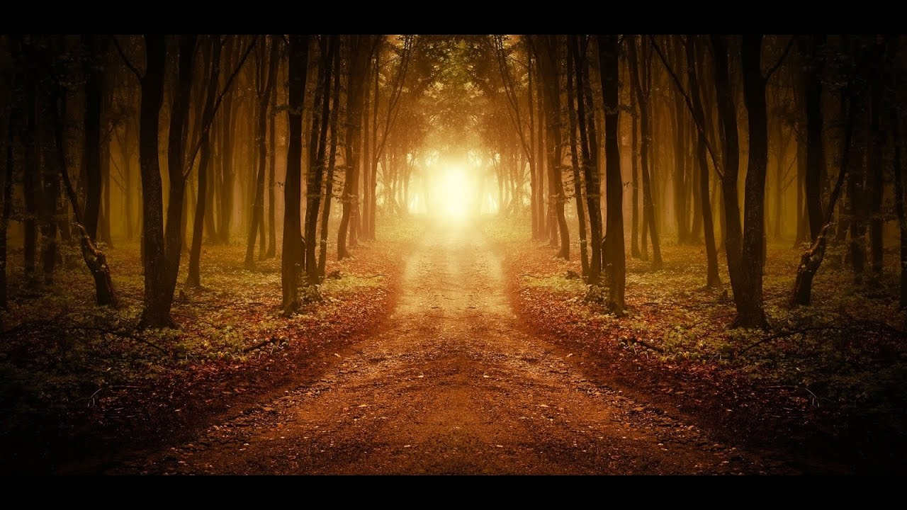 Information VS Wisdom - Extracting Meaning On Your Spiritual Journey