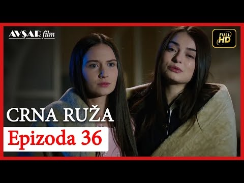 Crna Ruza -