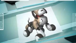 Zoomer собака