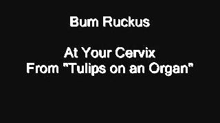 Watch Bum Ruckus At Your Cervix video