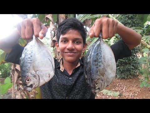 Village food factory /Pomfret Fish Fry village Cooking by my