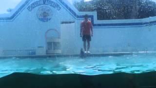 今回は友達のヲタナベと一緒に品川水族館に行きました 最初品川水族館で...
