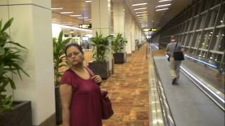 Indira Gandhi International Airport Delhi Terminal 3