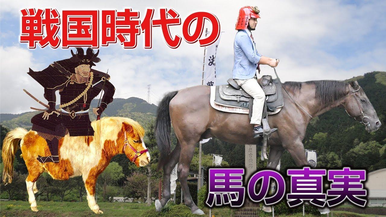 【武田騎馬隊】戦國時代の馬の真実【長篠の戦い】 - YouTube