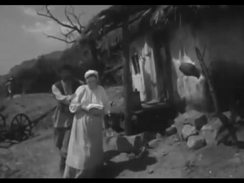 """Житомир в кино (""""Рыжик"""", 1960)"""